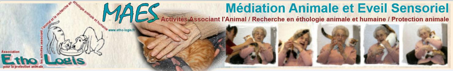Médiation Animale et Eveil Sensoriel (MAES) / Association Etho-Logis - Delphine Descamps